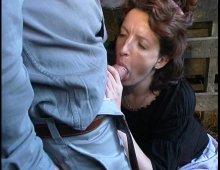 18829 - Femme en bas résilles se fait baiser dans le foin