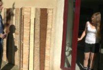 28767 210x142 - Une jeune coquine enculée sur la terrasse
